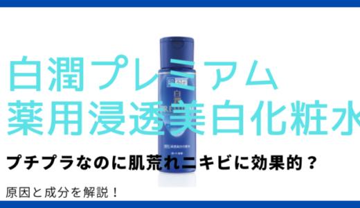 【成分分析】白潤プレミアム化粧水はニキビに効果ある?肌荒れする原因も解説!